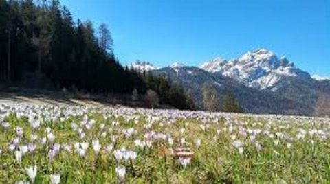 Voyage Tyrol et Bavière